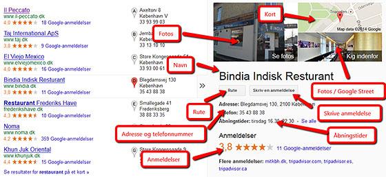 Google+ info boks
